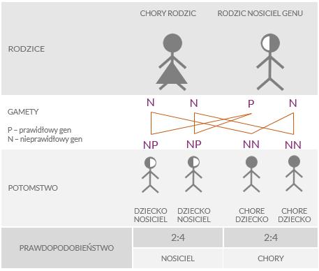 Grafika dziedziczenia mukowiscydozy